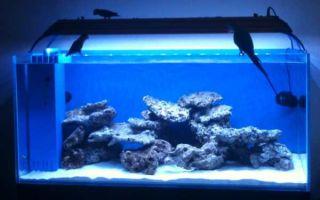 Современное LED освещение аквариума