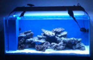 led освещение аквариума